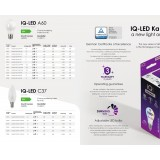 KANLUX 27299 | E14 7,5W -> 61W Kanlux gyertya C37 LED fényforrás IQ-LED 830lm 6500K 280° CRI>80