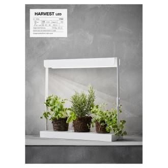 MARKSLOJD 107025 | Harvest Markslojd asztali lámpa 50cm vezeték kapcsoló 1x LED 600lm 4000K fehér
