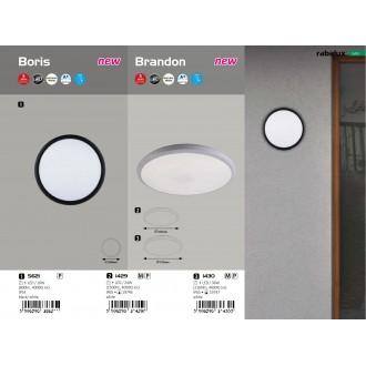 RABALUX 1429 | Brandon-RA Rabalux fali, mennyezeti lámpa 1x LED 1500lm 4000K IP65 fehér